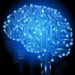 human cyborg brain